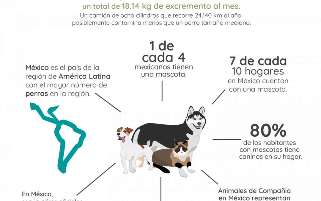 Analiza la cantidad de residuos de mascotas